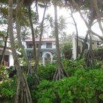 Ayurveda Garden