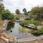 Emu Bay Lavender Farm