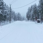 The road near cabin