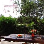 Kamelia, verandah at the back