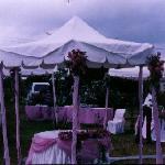 Shalom House Wedding on the Grounds