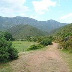 Beautiful setting of Pat Busch Private Nature Reserve