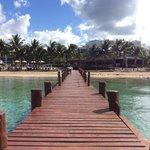 the pier