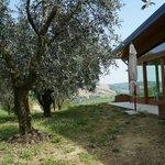 giardino degli olivi e veranda ristorante