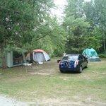 Nice size camp site