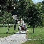 Carriage Rides Through Time