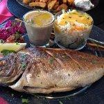 pan roasted fish plat (main dish)