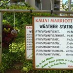 Very funny weather station