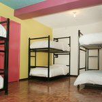 Shared rooms for 4, 6, or 8 people, each with its private ensuite bathroom.