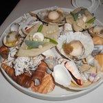 Oyster treats