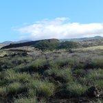 Pu'ukohola Heiau Hisorical Site Next Door