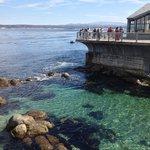 Vista da baía de Monterey