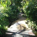 Amazing tropical oasis