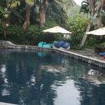 Freshwater pool!