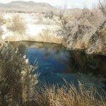 The pool where the pupfish roam