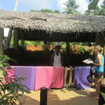 The garden where yoga is practised under the thatched roof.