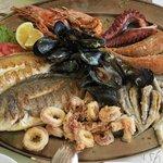 Ici le poisson et les fruits de mer sont au TOP !