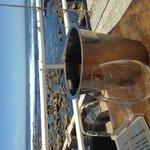 Fryer's Cove Vineyards