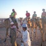 On Camels a Bit Bumpy