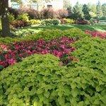 Jardim Botânico de Montreal