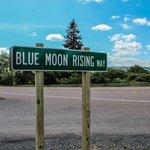 Blue Moon Rising Foto