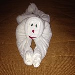 Fun Towel Art