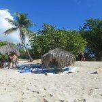 Calalina Island trip