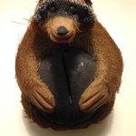Hucha mapache