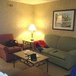 Adequate sofabed