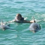 nager avec 2 dauphins !!! ouf !!!