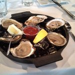 Premium oysters from Maine