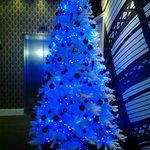 Lovely Christmas tree