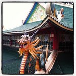 Temple Dragons