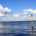 ecocruise on Charlotte Harbor