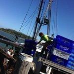 Fresh catch bound for markets