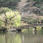 桜のピンクと新緑が美しい日本庭園