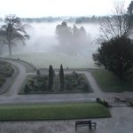View from our window on a misty morning.