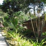 Photo of White Sand Resort