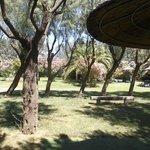 Salinello Camping Village Foto