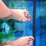 la fish pedicure