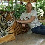 Фотографирование с тигром
