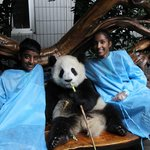 Personal visit with the Panda