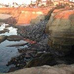 Sunset Cliffs area