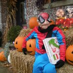Uncle Miro as Spiderman at Highwood's Pumpkin Fest