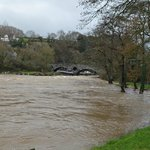 High river at Cenarth