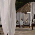 White Beach Beds