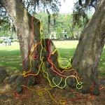 SCAD artsy-fartsy in Forsyth Park