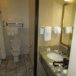 Bathroom sink outside toilet/shower rm 229