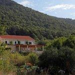 Soline Apartments-Mljet National Park