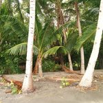 Blick auf die Hütten vom Strand aus